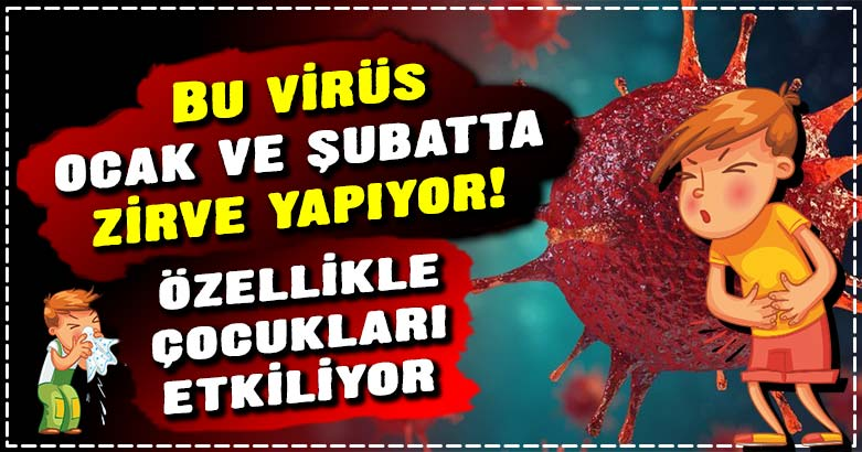 Bu virüs ocak ve şubatta zirve yapıyor! 2