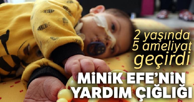 Minik Efe'nin yardım çığlığı 2