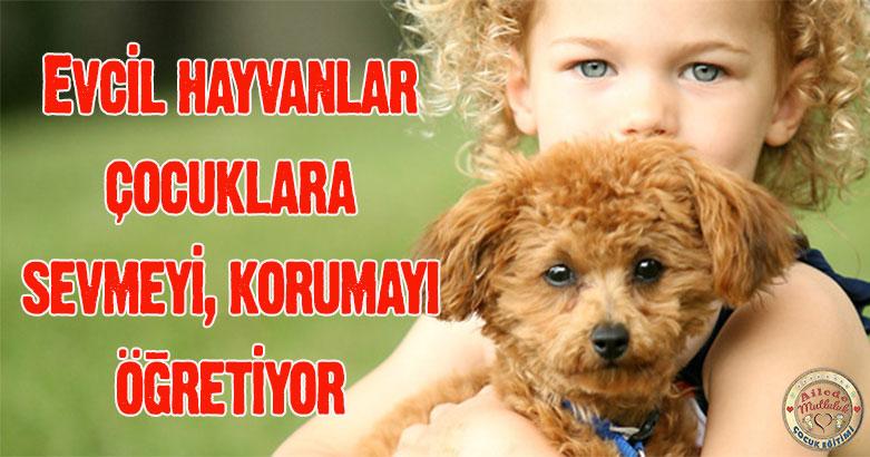 Evcil hayvanlar çocuklara sevmeyi, korumayı öğretiyor 4