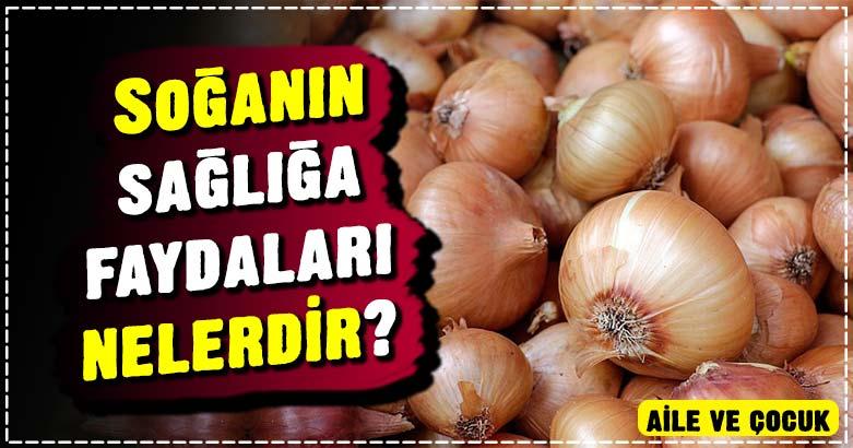 Soğanın faydaları nelerdir? Soğanın sağlığa faydaları nelerdir? 2